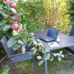 Autoren-Interview im Garten: Birgit Hedemann
