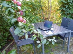 Outdoor Buero von Birgit Hedemann