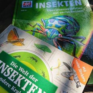 Kindersachbuch-Illustrationen im Vergleich: Was ist Was Insekten und das Stickerbuch die Welt der Insekten